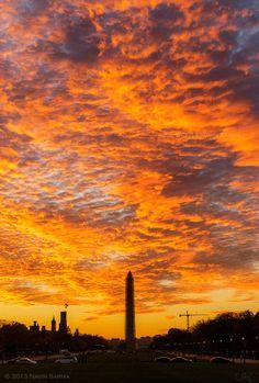 ✯ڿڰۣ-- Sunset, Washington, D.C., Washington Memorial - Navin Sarma