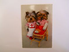 Cute Dogs Dressed as Nurse and Patient Kruger Postcard by Wildbun