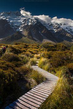 Hobbit trail, New Zealand