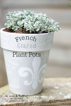 French Glazed Plant Pots | So Much Better With Age
