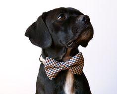 Farmer Checks Bow Tie Dog Collar