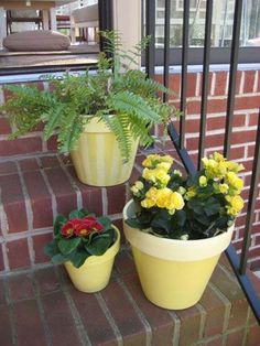 How To Paint Terra Cotta Pots & Planters For A Burst Of Color And Curb Appeal | Young House Love