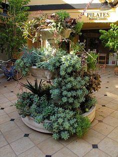 Fountain repurposed as succulent planter