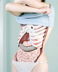 Modische Atlas der Anatomie by Koen Hauser, via Behance