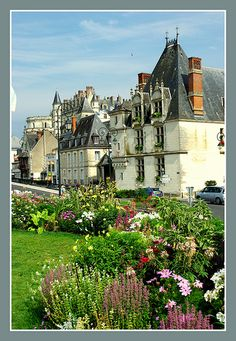 Amboise (Vallée de la Loire/France)