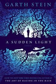 """""""A sudden light"""" by Garth Stein / FIC STEIN [Oct 2014]"""
