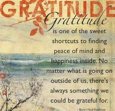 In spite of a recent loss of an important relationship I feel immense gratitude for the great times I had with this person.  Gratitude quote via Carol's Country Sunshine on Facebook