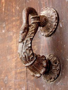 Snake door handle