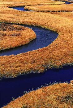 Trout Creek, Yellowstone National Park #USA
