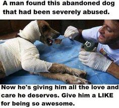 A man found this abandoned dog that had been severely abused. Now he's giving him all the love and care he deserves. Give him a LIKE for being so awesome.