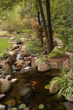 beautiful waterfall and pond