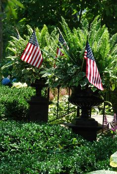 flags in the urns...
