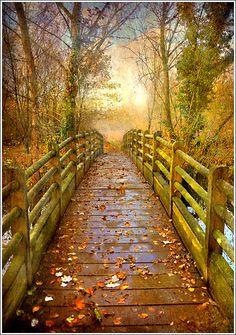 Footbridge.