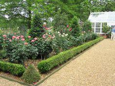 Roses and Other Gardening Joys: Garden Tour #2 - How Impressive!