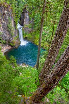 oregon, waterfalls, wood, umpqua river, clearwat river, north umpqua, rivers, place, tokete fall