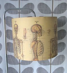 Cool decoupage idea for a hospital or chiropractic office!