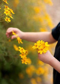 Picking wildflowers via Secret Dreamlife