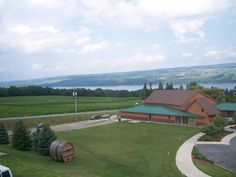 Glenora Winery on Seneca Lake in NY. One of my favorite wineries, and a gorgeous view to boot.
