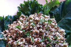 #Sprouted #Grains: Trendy, but Worth It?