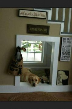 Dog nook under the stairs. love this
