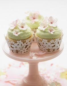 Cherry Blossom Cupcakes  )