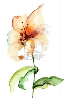Yellow Lily flower, watercolor illustration