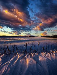 """""""Morning's Eve""""  Wisconsin  From the Horizon series by Phil Koch  Portraits of Landscapes."""