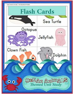 Ocean Animals Unit Study: Reading Flash Cards