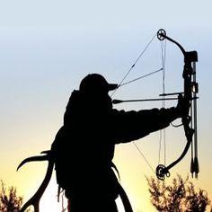 hunting   bow hunting