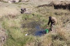 Collecting contaminated water in Ethiopia