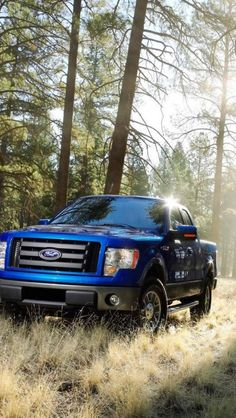 2014 Ford Truck. So beautiful!!! :)