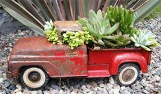 Succulents in an old truck - adorable! By Fundemento Designs