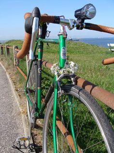 Gazelle Tour de France green