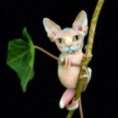 Photoshopped cat (animals) via @junkyardmessiah