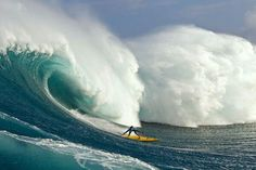 avalanche surfing.