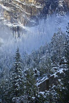 Yosemite National Park, California; photo by .Joe Ganster
