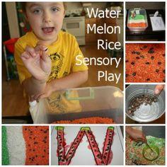 watermelon sensory bin and letter w craft