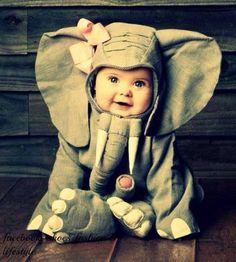 baby elephant.. EEEEEEK :)