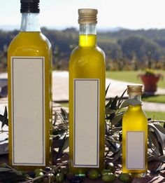 From olive to coconut, here's the scoop on the most nutritious and delicious cooking oils. cook oil, olive oils, food, oliv oil, coconut oil, cooking, health, skin care products, olives