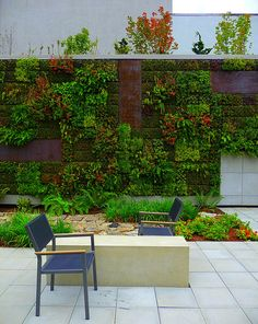 living wall at Hotel Modera in Portland