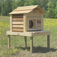 Outside Cat House - 17 Inch Cedar Cat House with Platform : Size 17 ...