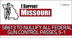 Missouri Senate Committee approves bill to nullify all federal gun control measures - past, present, or future.