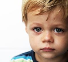 Toddlers are often talked about as if they are a species unto themselves. And when we're in the thick of it -- the testing, mood swings and meltdowns (ours and theirs) -- we may indeed feel in alien territory. Fear not! Toddlers are just small hu