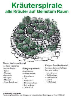 Kräuterspirale Pflanzplan