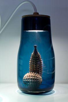 --Lit display jars.
