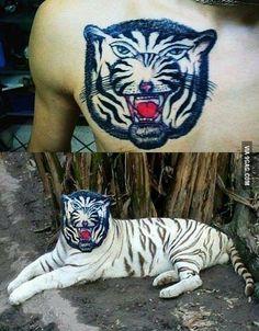 Lol! Nice Tiger Tattoo