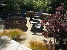 The coppery metal cauldron and the painted Adirondack chairs would suit a Craftsman-style home perfectly. Design by Dig Your Garden Landscape Design in San Anselmo, CA. Learn more about this lawnless garden here: http://www.landscapingnetwork.com/san-francisco/lawnless-garden.html