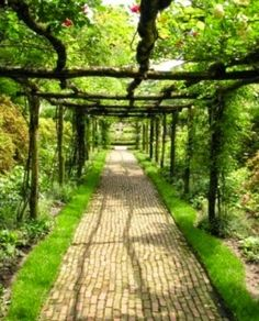 24 Hints for Gorgeous Gardens
