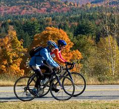 The Fall Foliage of Vermont
