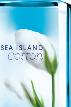 A gorgeous refresh for this oh-so refreshing fragrance! #SeaIslandCotton